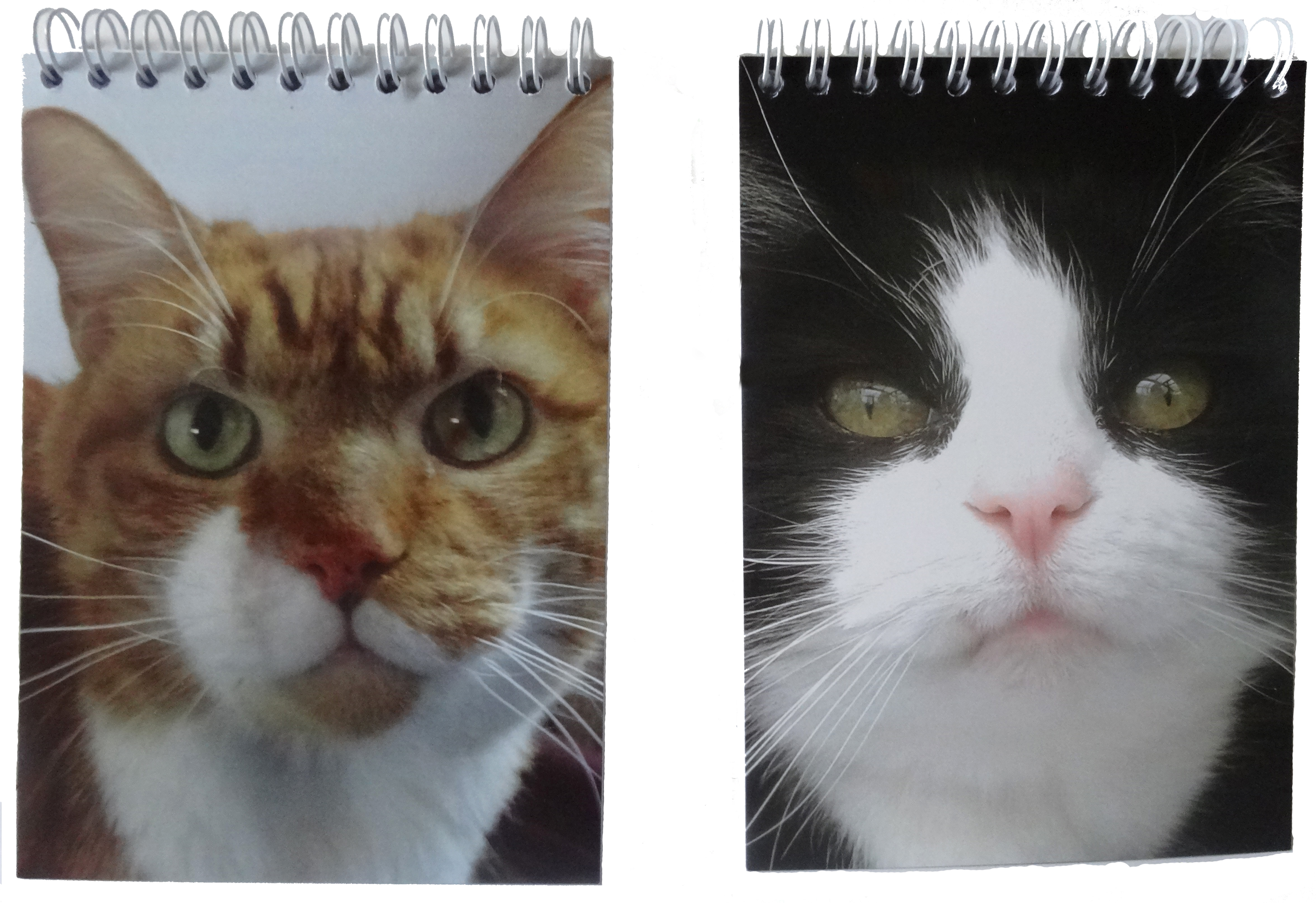 Paws & Claws Notepads